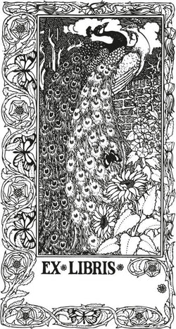 Bookplate peacock. Download file 2000 x 3746 Pixel for your individual print