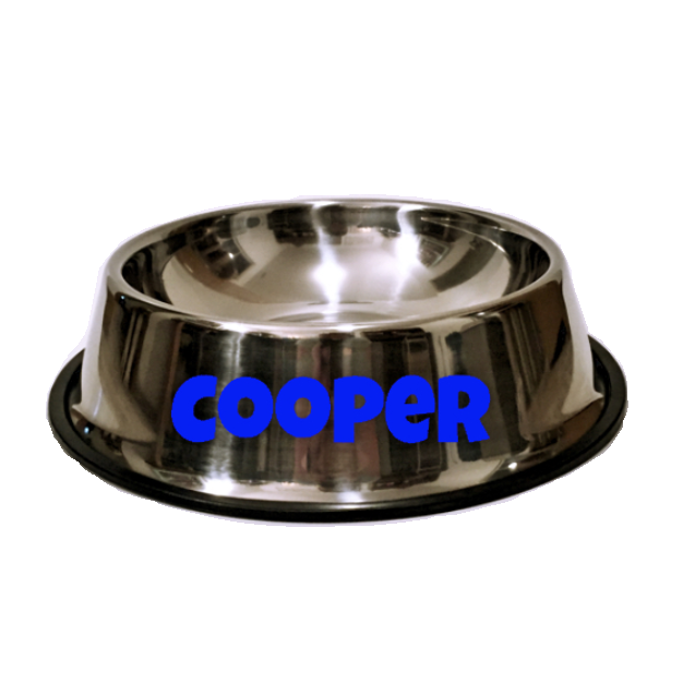 'Cooper' Stainless Steel Personalized Dog Bowl