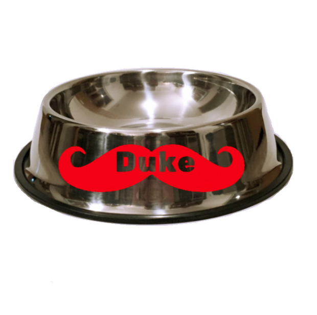 'I Mustache You A Question' Stainless Steel Personalized Dog Bowl