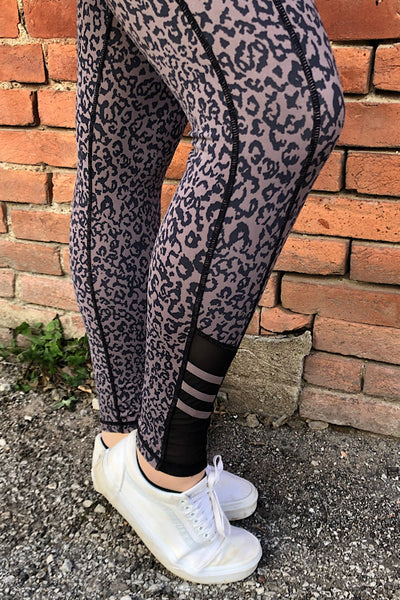 Highwaist Leopard Print Leggings (S-2XL)