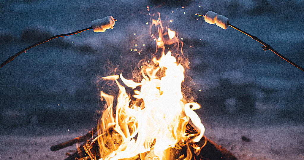 Cooking Over the Open Flames: Campfire Meals to Please the Whole Family