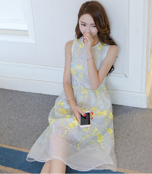 EMBROIDERY SLEEVELESS RIBBON LACE DRESS