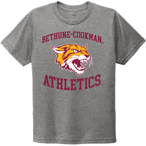 aka alpha kappa alpha hbcu shirt pink and green