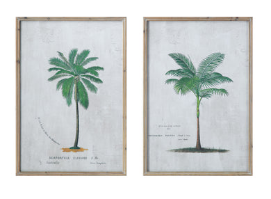 Palm Tree Wall Decor (2 Designs) (DS)