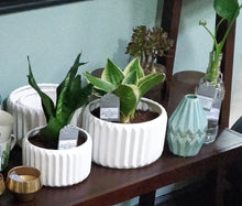 Bloomingville White Fluted Planter