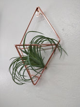 Rose Gold Metal Air Plant Wall Fixture