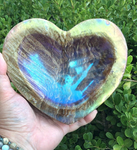 Huge Aura Petrified Wood carved heart bowl