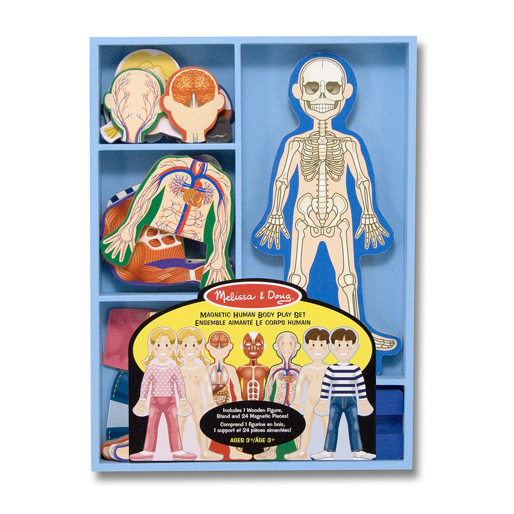 Magnetic Human Body Play Set