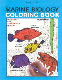 Marine Biology Coloring Book