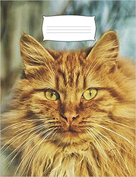 Composition Notebook- Orange Tabby Cover - College Ruled