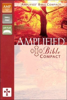 Amplified Bible (Imitation Leather)
