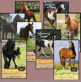 Keystone Stables Series, Volumes 1 - 8