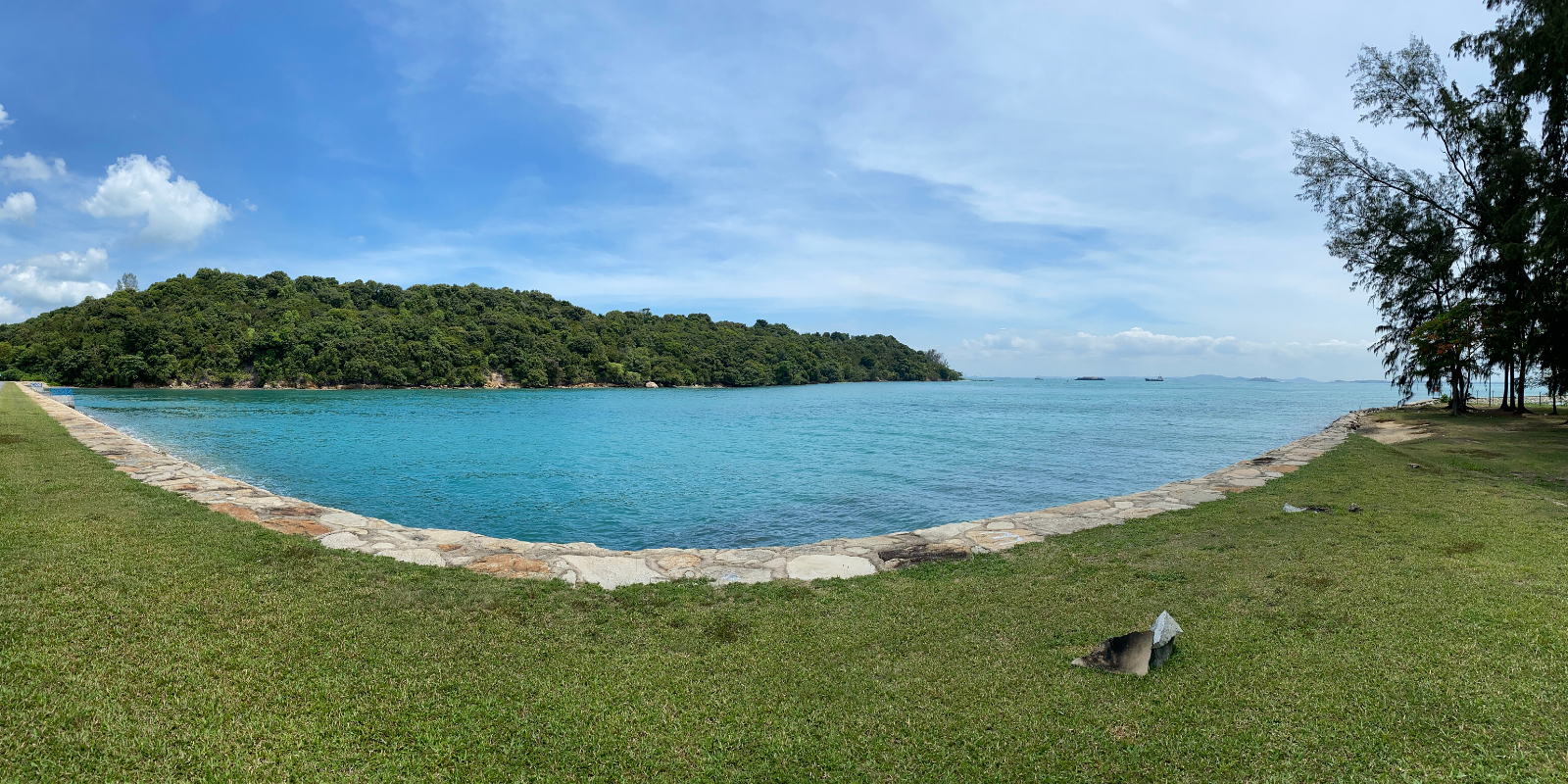 Discovering Singapore's Rich Marine Ecosystems: The Latest St John's Island Study Tour