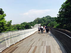 Henderson waves walk , Bonding