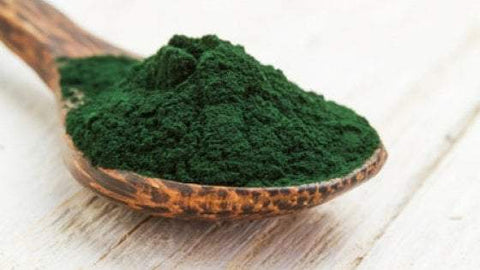 Essential Living Spirulina -200 gms