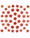 Dry Flower Design - Red