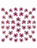 Dry Flower Design - Purple