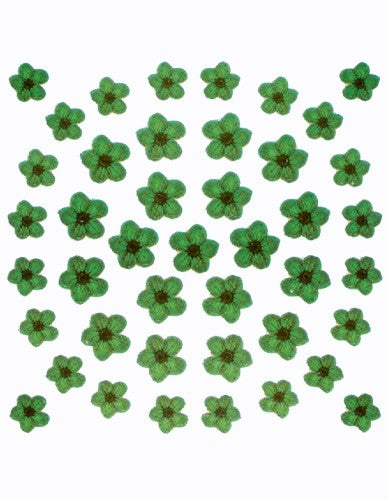 Dry Flower Design - Green