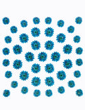 Dry Flower Design - Blue