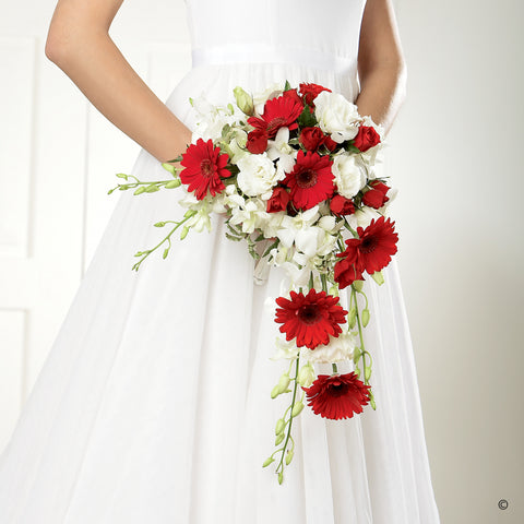 Crimson Gerbera & Orchid Shower Bridal Bouquet - Ramsbothams Florists Milton Keynes