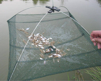 Fish-Trapp Trap Nets Folding Fishing Trap