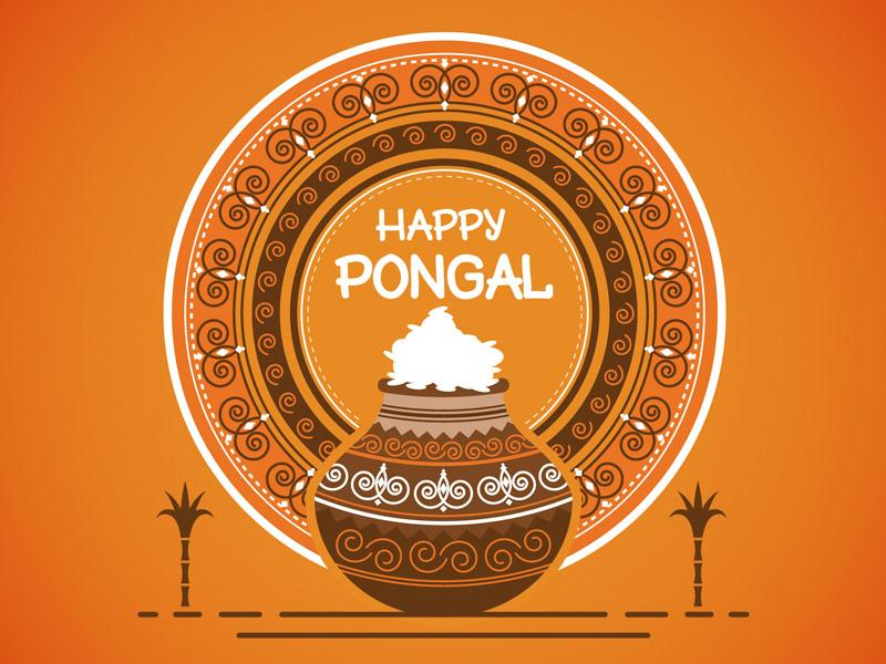 Don't know about Pongal Festival? Here is an Easy-Peasy Guide