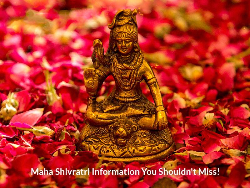 Importance of Maha Shivaratri and Why is it Celebrated