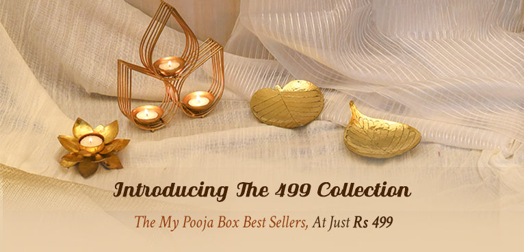 The 499 Collection