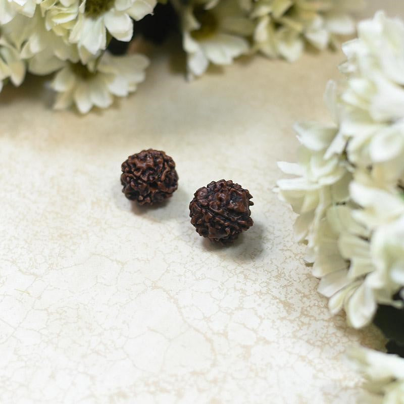 natural 5 mukhi rudraksha benefits