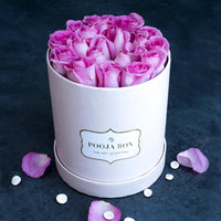 Light Pink Roses - Pastel Pink Flora Box