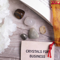 Business Crystal Healing Tumble Stone Set