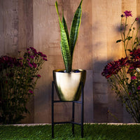 Gorgeous Votive Golden Planter