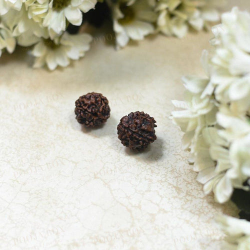 Natural Panchmukhi \five Face Rudraksha Pooja Items