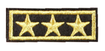 Patch Embroidered - Lieutenant General