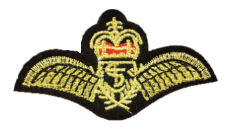 Patch Embroidered - Royal Air Force