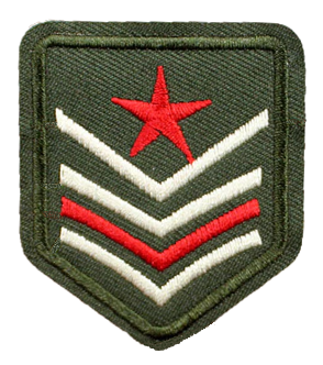 Patch Embroidered - USAF Intelligence - Staff Sergeant