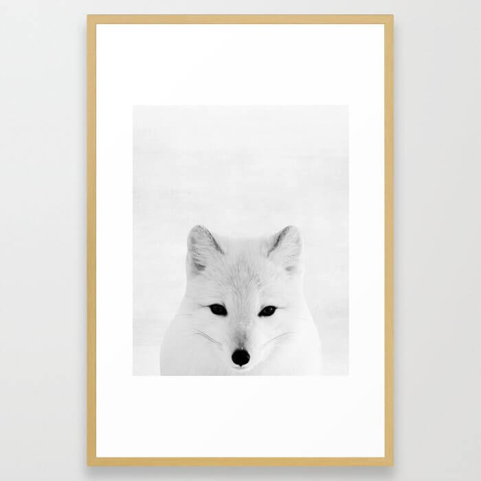 White fox, Woodland, Animal, ZOO, Nursery, Minimal, Modern, Wall art Framed Art Print