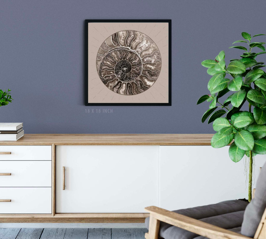 Fossil Ammonite Rock Wall Art for the Living Room; Cream Spiral Abstract Shell Circular Contemporary