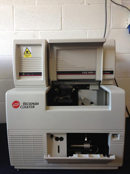 Beckman Coulter CEQ 8000 Genetic Analysis System (3066833) - Richmond Scientific