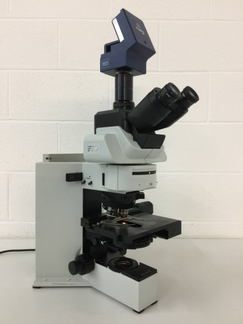 Olympus BX60F5 Fluorescence Microscope with Jenoptik Progres MF Camera - Richmond Scientific