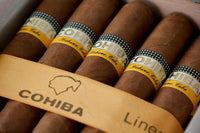 Cohiba Cigars for Beginners