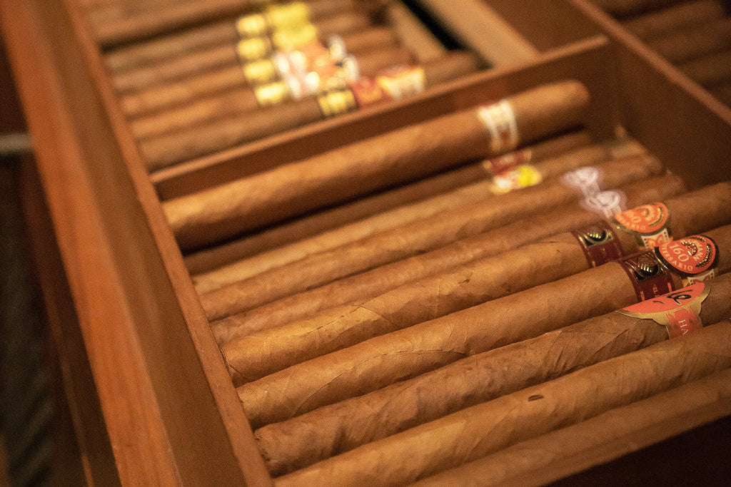 Can You Store Your Cigars Without a Humidor?