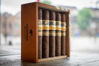 Spotlight: Should I Store My Cigars in a Cool Place?