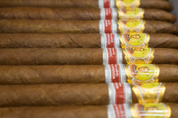 Top 5 Regional Edition Cigars to Smoke this Summer