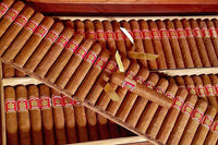 Vintage Cigars: Why You Should Try Them