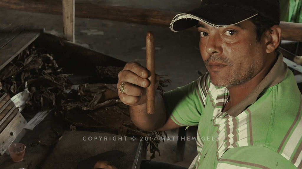 Photograph of Cuban Cigar Tobacco Farmer and Cigar.