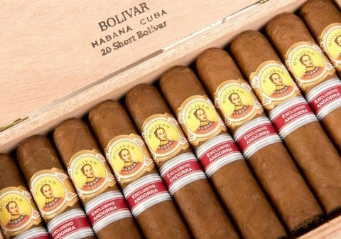 Bolivar Short Bolivar Cigar for sale - EGM Cigars