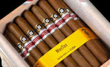 Punch ManTua Cigar (Ex. Italia 2020) - Box of 50 - EGM Cigars