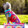 Ripped T's for Summer! For XSmall to Medium Size Dogs