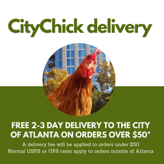 CityChick delivers!